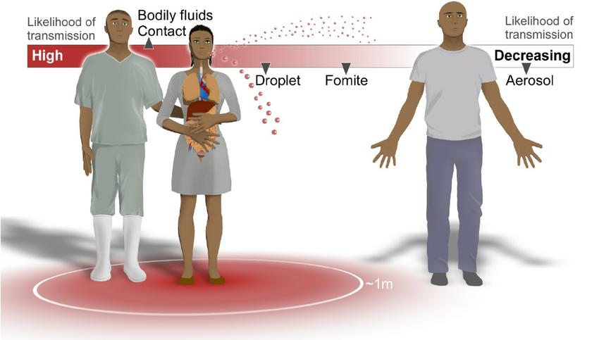 Coronavirus-airborne(1)